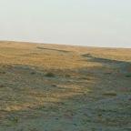 Wüste Gobi 1. Klasse